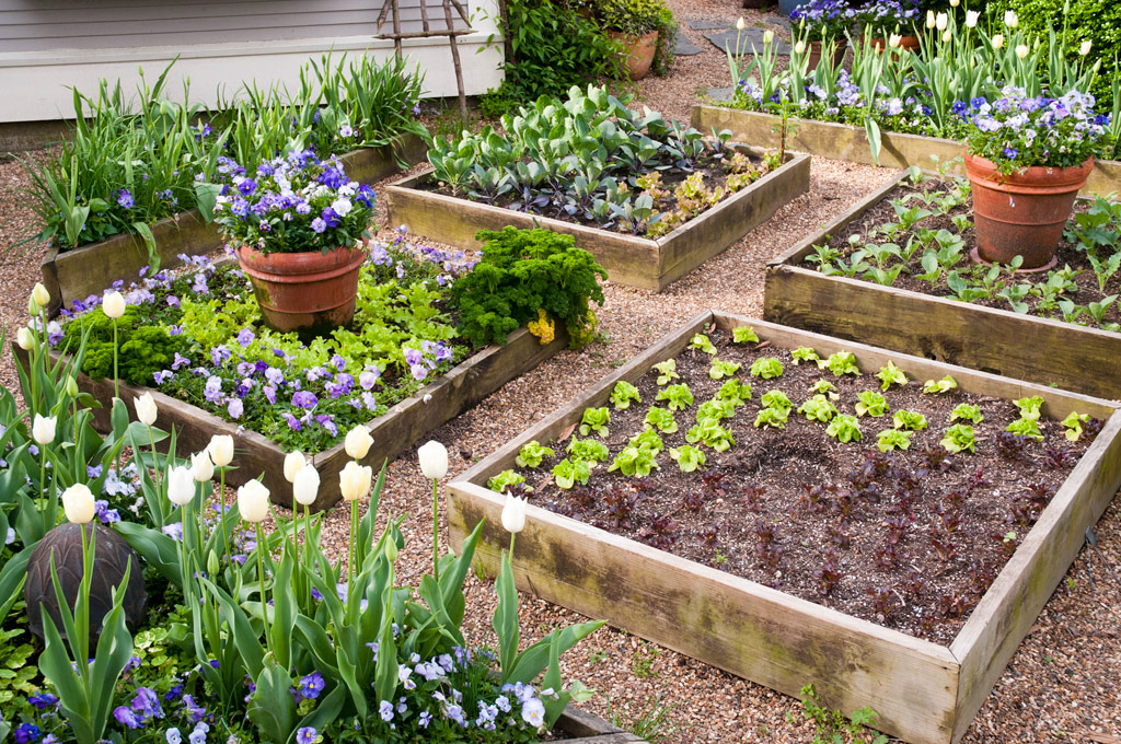 make the most of your garden space or to convert unused land into something more productive one way to accomplish that is to build raised garden beds - Garden Bed